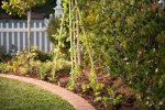 Бамбуковые шпалеры в саду —  полезные советы