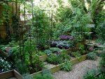 Высокие грядки создают архитектуру сада