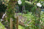Ваш красивый сад на заднем дворе