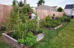 Планирование огорода  — 5 полезных советов