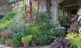 Измени свой сад к лучшему