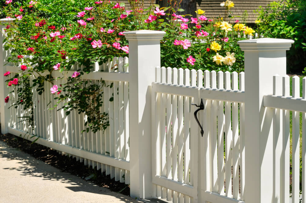 Выбор лучшего забора для вашего сада