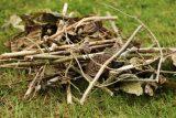 Древесные отходы: измельчение и компостирование