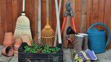 10 обязательных инструментов для домашнего садоводства