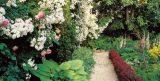 Преобразование маленького сада: 7 простых шагов