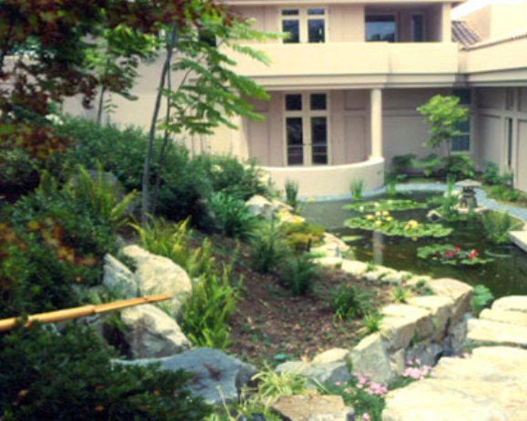 Беседки и дорожки в саду на даче