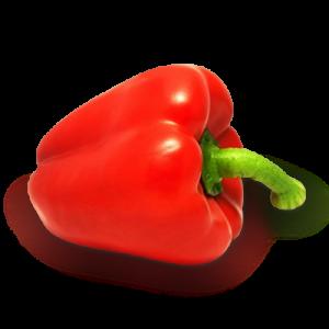 облепиха полезные свойства витамины