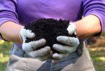 Хорошая почва означает хороший урожай