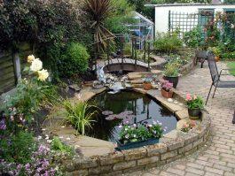 10 идей как создать недорогой  садовый пруд